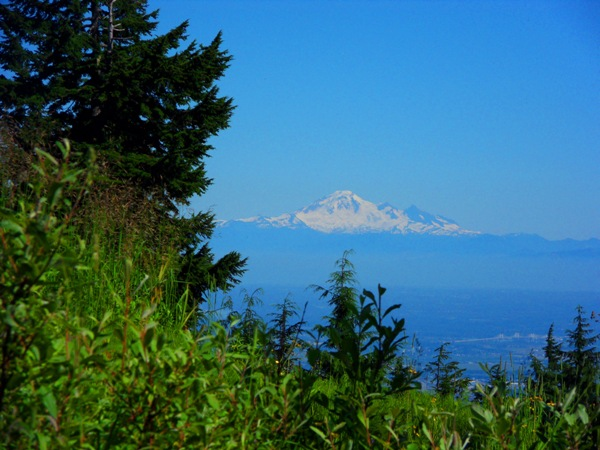 View of Mt. Baker from Warrior Dash Track