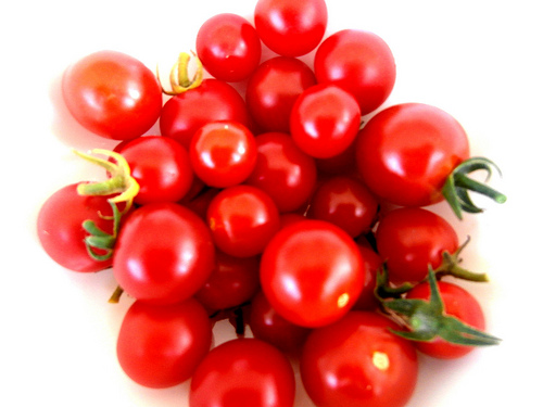 Container-Grown Cherry Tomatoes