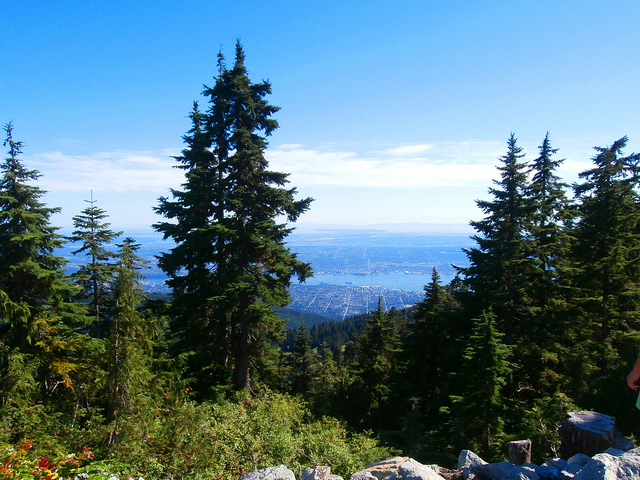 Grouse Mountain View