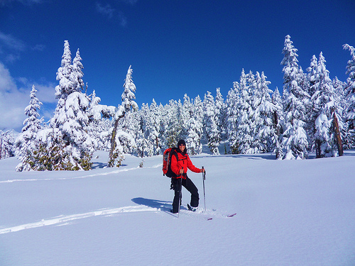 Skiing Red Heather Trail