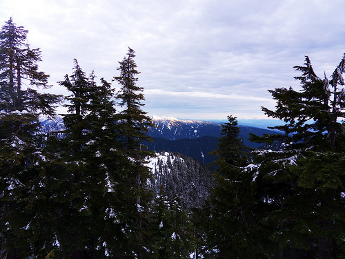 Snowshoe Grind Mountain View