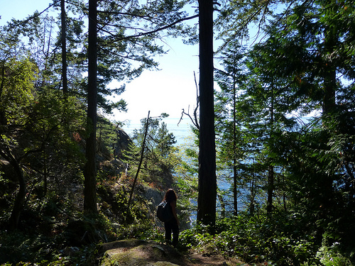 Lighthouse Park Hike