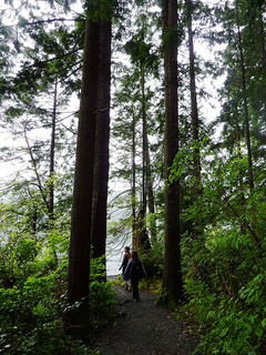 Sasamat Lake Trail