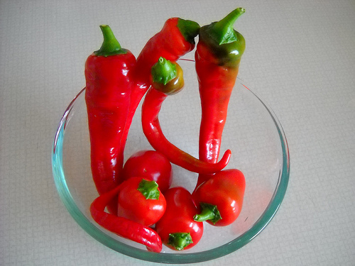 Peppers Grown in Containers